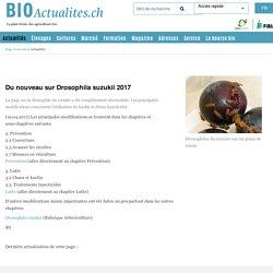 BIOACTUALITES_CH 19/04/17 Du nouveau sur Drosophila suzukii 2017 La page sur la drosophile du cerisier a été complètement réactualisée. Les principales modifications concernent l'utilisation du kaolin et divers insecticides