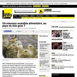 Un nouveau scandale alimentaire, au pays du foie gras ?