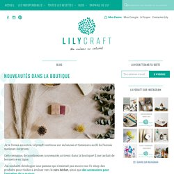 Nouveautés dans la boutique – Lilycraft