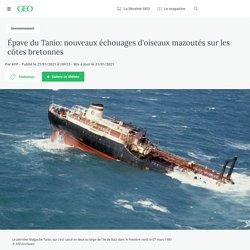 21 jan. 2021 Épave du Tanio: nouveaux échouages d'oiseaux mazoutés sur les côtes bretonnes - Geo.fr