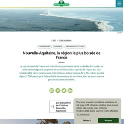 Nouvelle-Aquitaine, la région la plus boisée de France