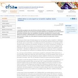 EFSA 26/11/13 L'EFSA délivre un avis urgent sur la bactérie végétale Xylella fastidiosa