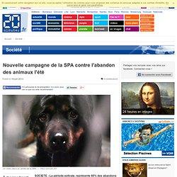 Nouvelle campagne de la SPA contre l'abandon des animaux l'été