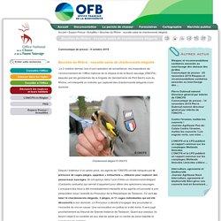 ONCFS 09/10/19 Bouches-du-Rhône : nouvelle saisie de chardonnerets élégants