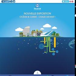 Nouvelle exposition Océan et climat : Chaud devant !