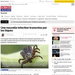 Une nouvelle infection transmise par les tiques