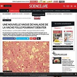 Une nouvelle vague de maladie de la vache folle pourrait débuter - Science-et-vie.com
