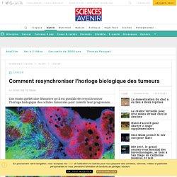 Nouvelle approche dans le cancer: recaler les cellules - Sciencesetavenir.fr