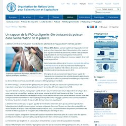 FAO -Nouvelles:Un rapport de la FAO souligne le rôle croissant du poisson dans l'alimentation de la planète