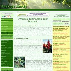 Bonnes nouvelles » Blog Archive » Amarante pas marrante pour Monsanto