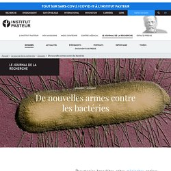 De nouvelles armes contre les bactéries - L'actu de l'Institut Pasteur
