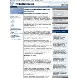 FAO 11/09/06 Nouvelles directives sur l'élevage de crevettes - 11 septembre 2006 - L'élevage de crevettes fait souvent l'objet d