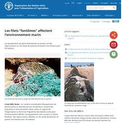"""Nouvelles:Les filets """"fantômes"""" affectent l'environnement marin"""