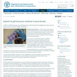 FAO 16/02/15 Explorer les génomes pour améliorer la santé animale La FAO et le SIB font équipe pour développer des outils de haute technologie dans la lutte contre la grippe aviaire et d'autres maladies infectieuses