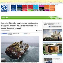 Marée noire en Nouvelle-Zélande: De nouvelles fractures sur la coque du cargo échoué