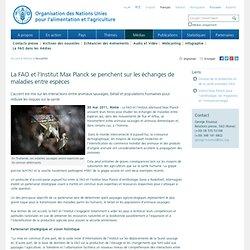 FAO 30/05/11 La FAO et l'Institut Max Planck se penchent sur les échanges de maladies entre espèce