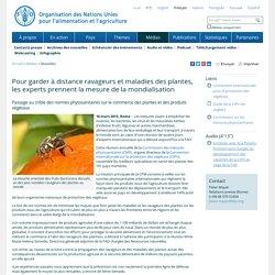 FAO 16/03/15 Pour garder à distance ravageurs et maladies des plantes, les experts prennent la mesure de la mondialisation