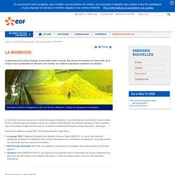La biomasse - Énergies nouvelles et renouvelables