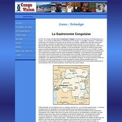 Congo Vision : Nouvelles visions pour le Congo et l'Afrique