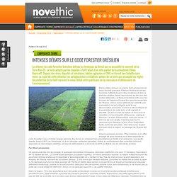 Intenses débats sur le code forestier brésilien - Agriculture - Rio+20