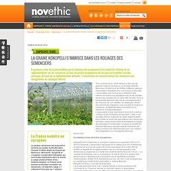 La graine Kokopelli s'immisce dans les rouages des semenciers - Agriculture - Environnement