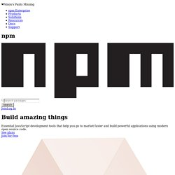 npm - Node Package Manager