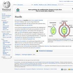Nucelle
