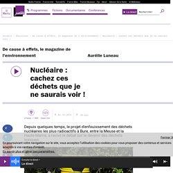 FRANCE CULTURE 02/10/16 DE CAUSE A EFFETS - Nucléaire : cachez ces déchets que je ne saurais voir !