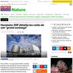 """Nucléaire: EDF détaille les coûts de son """"grand carénage"""""""