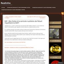 Edf : Des fuites à la centrale nucléaire de Paluel inquiètent la CGT