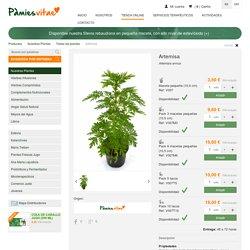 Todas las plantas - Nuestras Plantas - Artemisa - Pàmiesvitae