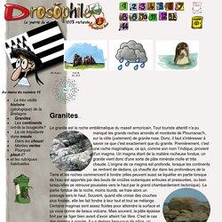 La Bretagne dans Drosophile