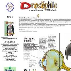 Drosophile - Le journal de la science