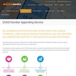 DUNS Number Appending Service, DUNS Number Append