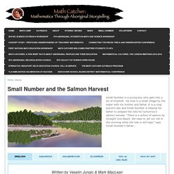 Small Number and the Salmon Harvest