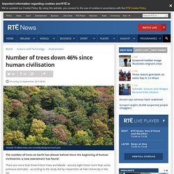 Number of trees down 46% since human civilisation