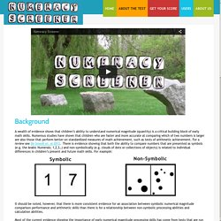 Numeracy Screener - About The Test