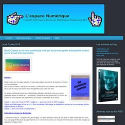 L'espace numérique: Book Creator ou le livre numérique créé par les jeunes geeks aulnaysiens (retour sur le travail d'un semestre)