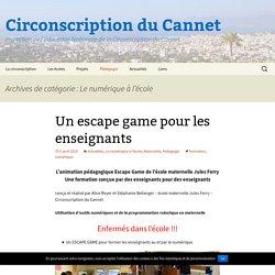 Circonscription du Cannet