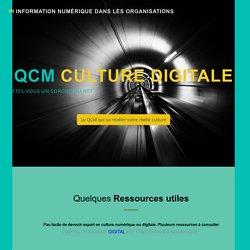 QCm. Culture numérique. Culture digitale. Histoire de l'Internet et du web