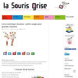 Livre numérique jeunesse : petits usages pour grandes créations (La Souris Grise)