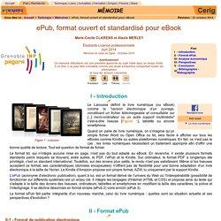 Format, ePub, eBook, livre numérique, DRM, liseuse, tablette