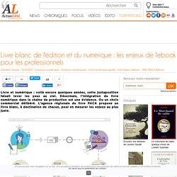 Livre blanc de l'édition et du numérique : les enjeux de l'ebook pour les professionnels