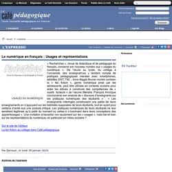 Le numérique en français : Usages et représentations