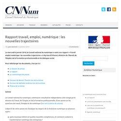 Rapport travail, emploi, numérique : les nouvelles trajectoires – Conseil National du Numérique