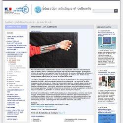 DAAC - Arts visuels - Arts numériques
