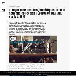 Plonger dans les arts numériques avec la nouvelle collection RÊVOLUTION DIGITALE sur MUSEUM - Museum