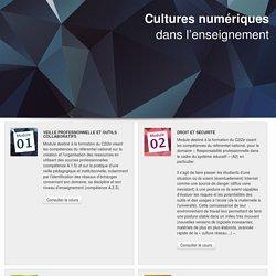 Cultures numériques dans l'enseignements