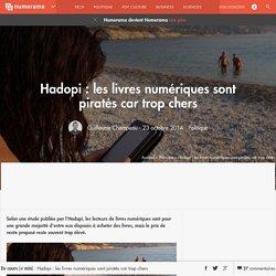 Hadopi : les livres numériques sont piratés car trop chers