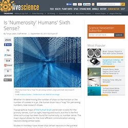 Is 'Numerosity' Humans' Sixth Sense?